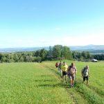 Marathonwanderung Stauferkreis-foto-b-haller