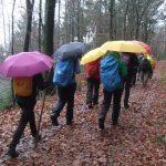 Wandern trotz Regen im Januar, Foto: S. Fischer
